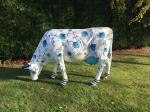 Image: Colourful Charingworth cow